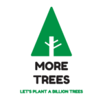 Forestree Sustainability - More Trees
